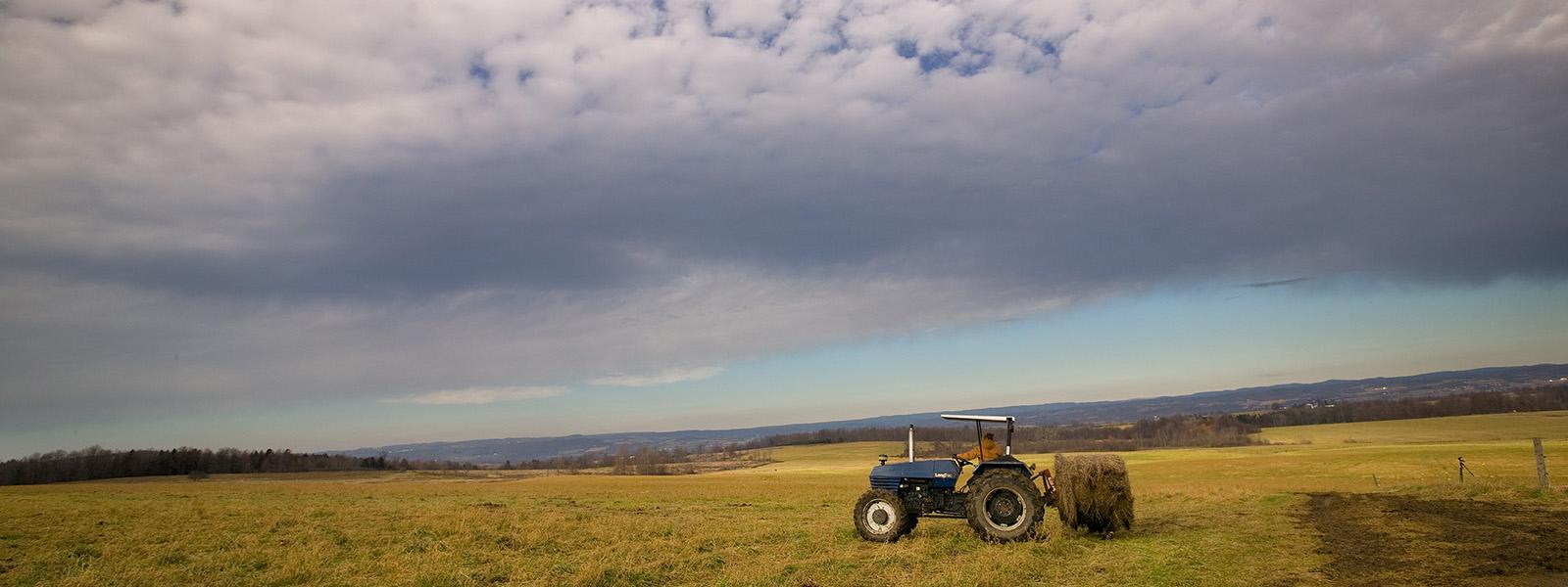 Farming, Minden